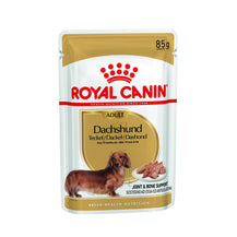 Royal Canin Dachshund Adult Wet Food - Pouches