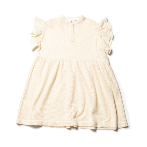Frill Sleeve Dress - ECRU / Lace