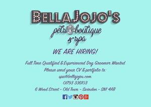 Dog Grooming Vacancy