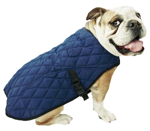 Aqua Coolkeeper® Cooling Dog Coat