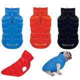 Puppy Angel Love Down Padding Vest for Bulldog