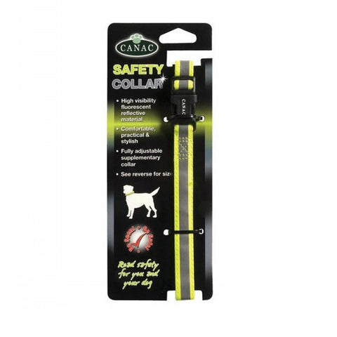 Fluorescent Safety Dog Collar