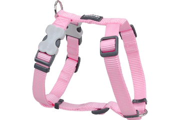 Red Dingo Dog Harness