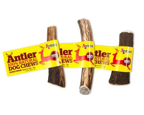 Natural Antler Dog Chew