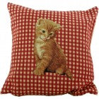 Kitten Checked Cushion