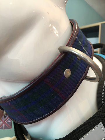 Holly & Lil Tartan Twill Dog Collar