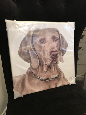 Waggy Dogz Weimaraner canvas