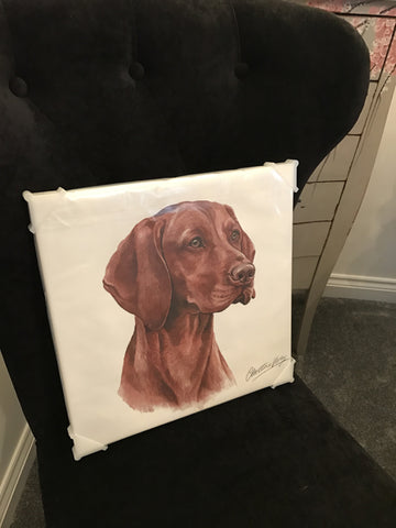 Waggy Dogz Vizsla Canvas