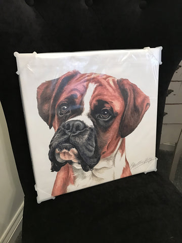 Waggy Dogz Boxer Canvas