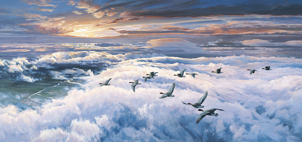 Pink-footed geese migrating picture