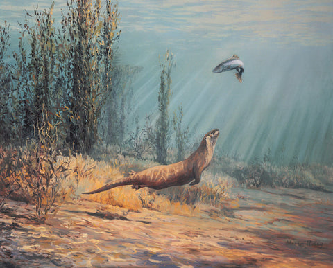 """The Pursuit"" Sea Trout & Otter Print"