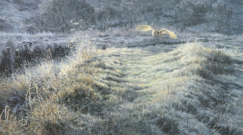 """Frosty Morning"" Hunting Barn Owl Print"