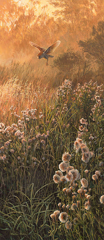 """Over the thistles"" Barn Owl Print"