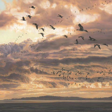 """Evening Flight"" Geese Print"