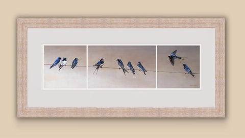 """Gathering Swallows"" Print"
