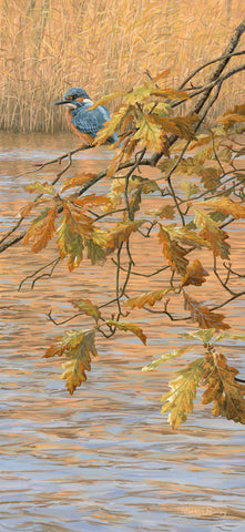 """Oak Leaves & Kingfisher"" Print"