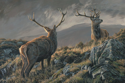 """The Royals"" - Red Deer Stags Print"