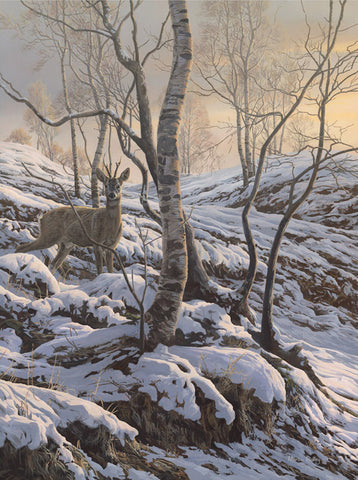 """Early Snow -  Roe Buck"" Print"