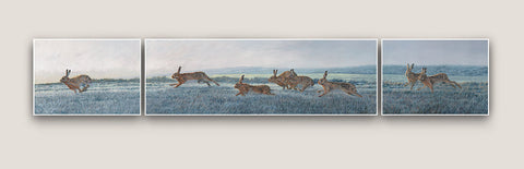 Frosty Morning Chasing Brown Hares Triptych