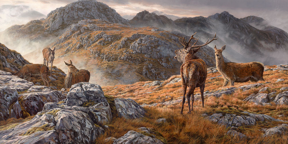 Red deer print by Martin Ridley. Druim Fada by Loch Hourn during the rutt.