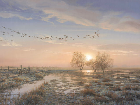 """Geese at Sunrise"" Wildfowl Print"