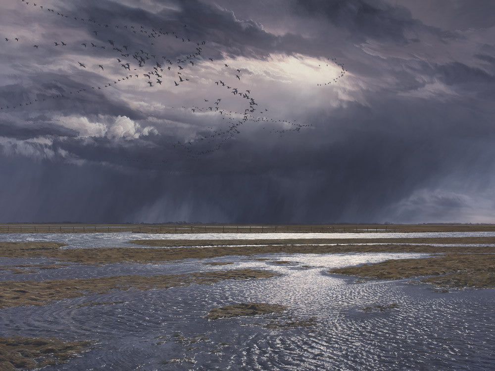 Limited Edition Print of Pink-footed Geese - Skeins of Geese, Solway Estuary by Martin Ridley