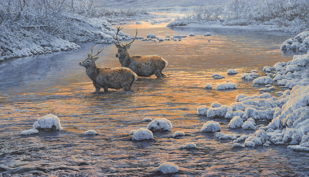 Red deer stags in snow print - from an original oil by Martin Ridley