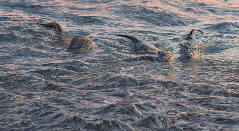 """Watchful Mother""  Swimming Otter and Cubs Print"