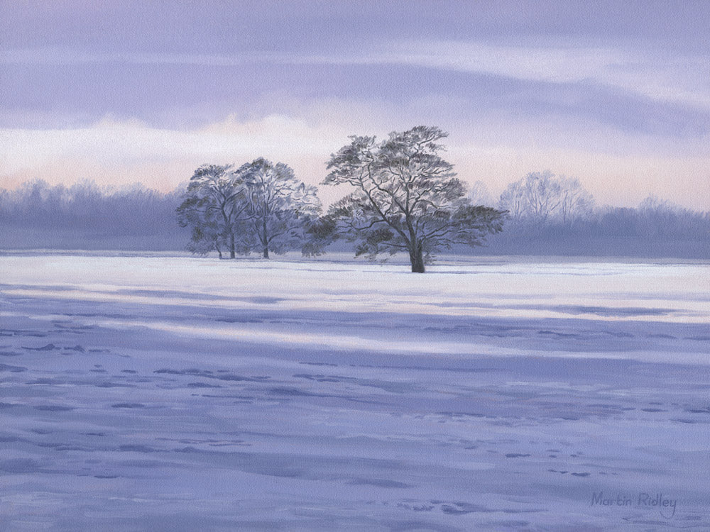 Picture of winter tree landscape