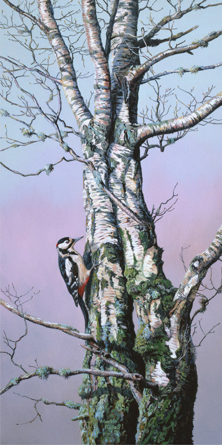 print of woodpecker on a tree