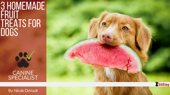 3 Homemade Fruit Treats for Dogs