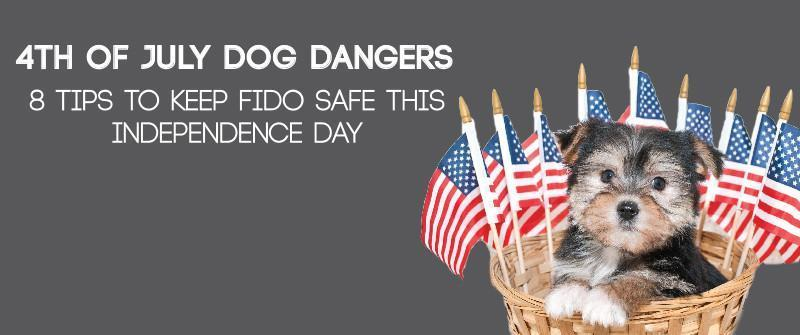 8 Tips to Keep Fido Safe this Independence day