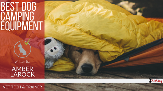 Best Dog Camping Equipment