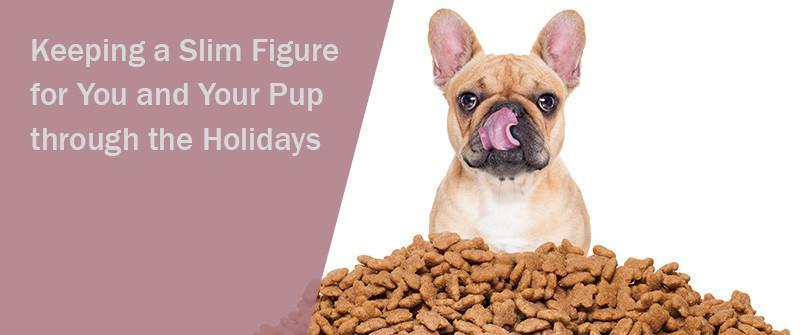 SitStay Blog Keeping a Slim Figure for You and Your Pup through the Holidays
