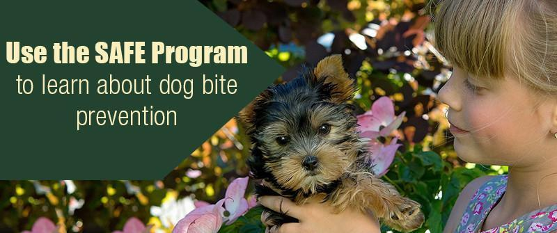 Use the SAFE Program to learn about dog bite prevention