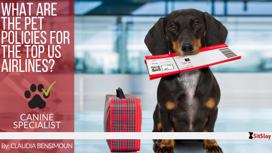 What are the Pet Policies for the Top US Airlines?