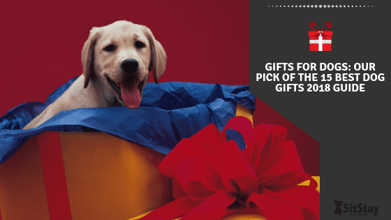 Gifts for dogs: Our pick of the 15 best dog gifts 2018 guide