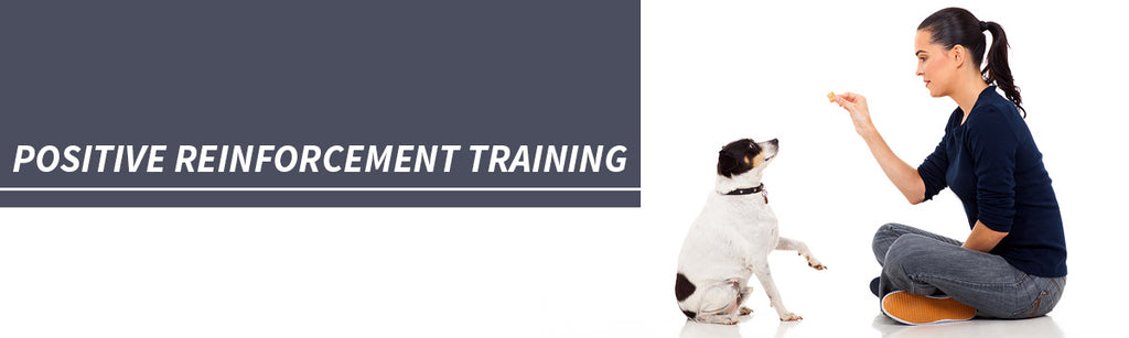 Positive Reinforcement Training for your dog logo