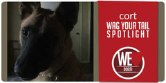 Wag Your Tail Spotlight - Featuring Cort