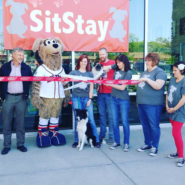 three women, two men, and one large mascot with a dog sitting in front of them, holding large scissors cutting a opening ribbon, a banner displaying SitStay is in the background