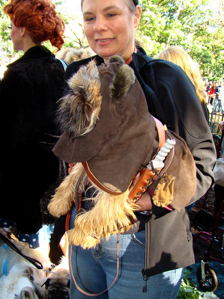 Brown furry dog wearing an Ewok dog costume