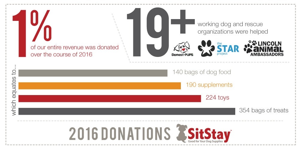 2016 SitStay Donations