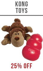 SitStay Kong Dog Toy
