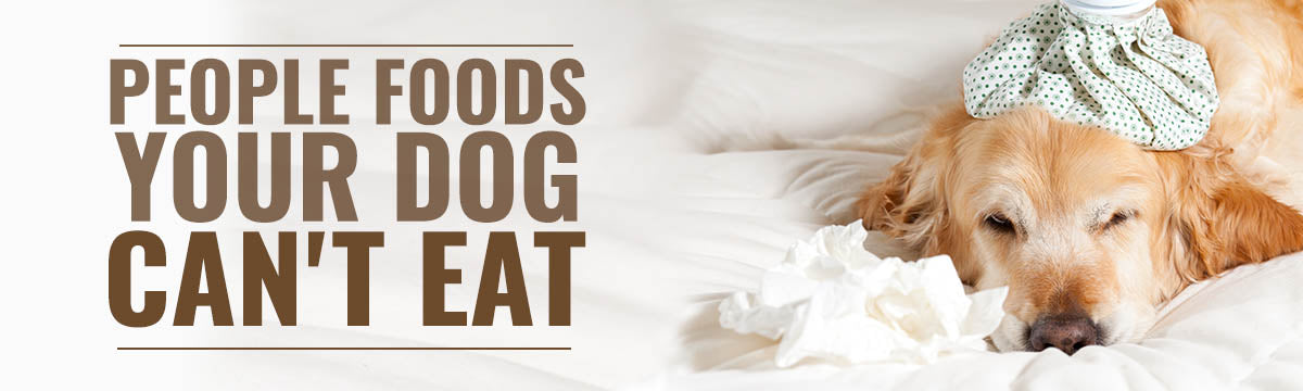 People Foods Your Dog Can't Eat