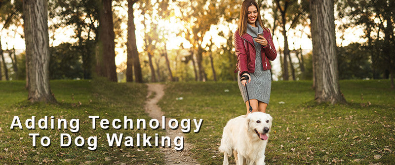 SitStay Blog Adding Technology to Dog Walking