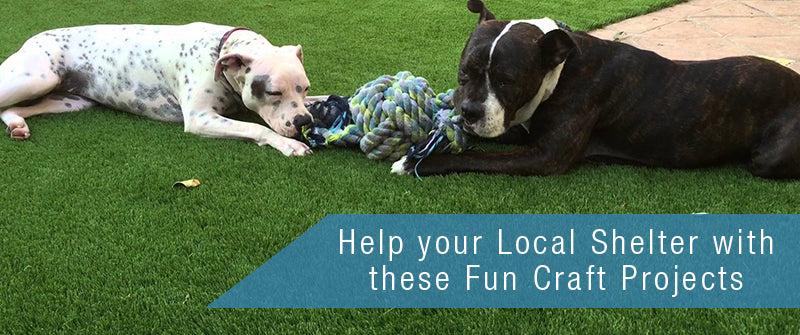 Help your Local Shelter with these fun Craft Projects