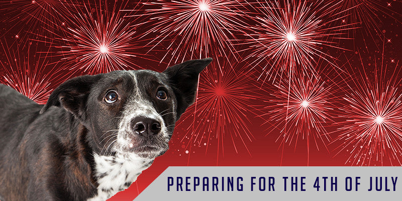 SitStay Blog: Preparing For The Fourth Of July