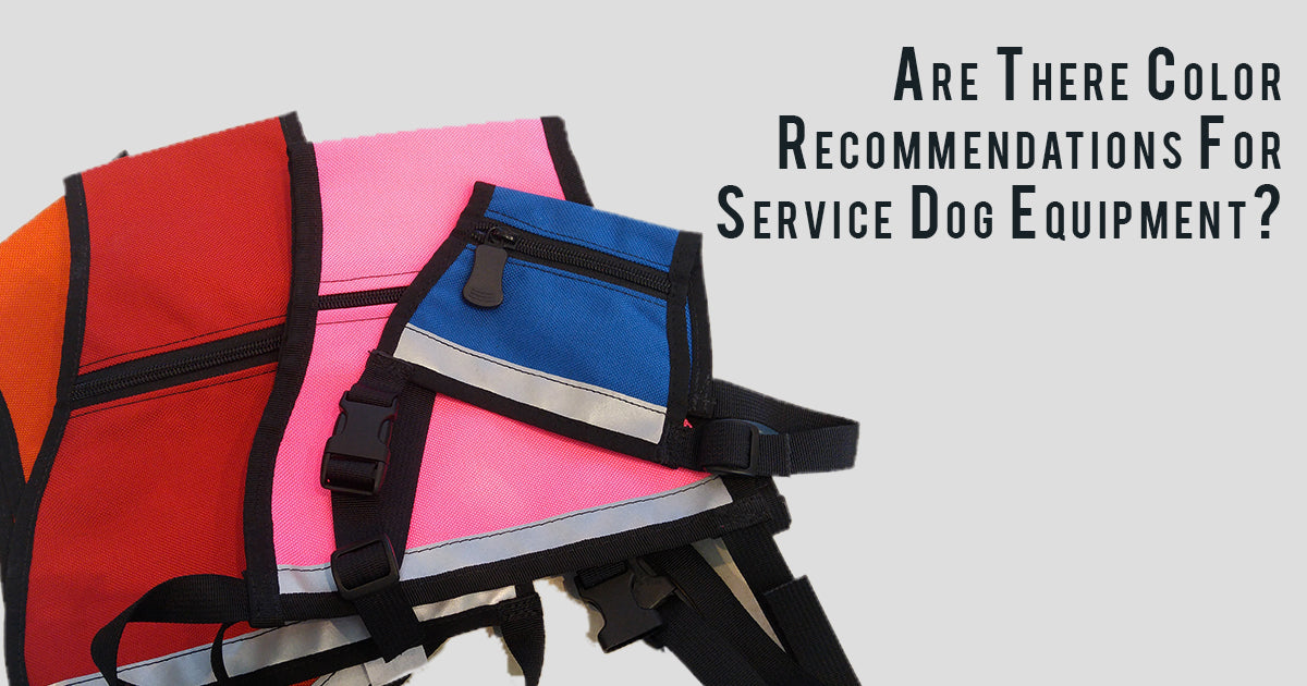 Are there color recommendations for Service Dog equipment and gear?