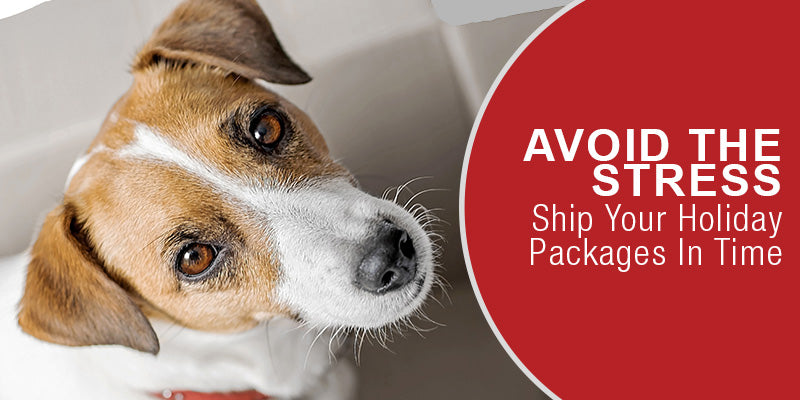 SitStay Dog Blog: Avoid The Stress: Ship Your Holiday Packages In Time