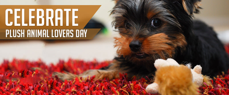 SitStay Blog Celebrate Plush Animal Lovers Day with a new plush toy for Fido!
